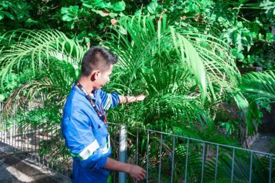 Agentes de conservação e limpeza